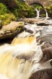 Corra a corrida da água Fotos de Stock Royalty Free