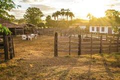corral Braziliaans Landbouwbedrijf in Pirenopolis royalty-vrije stock afbeelding