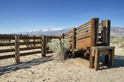 Corral And Cattle Chute Royalty Free Stock Image