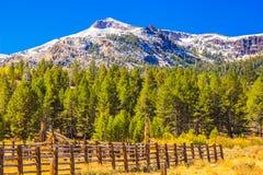 Corral de bétail en montagnes Images stock