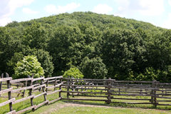 Corral del verano en escena rural de la granja Foto de archivo libre de regalías
