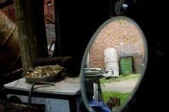 Corral en el espejo 1 de la vista posterior Imagen de archivo libre de regalías
