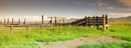 Corral et montagnes occidentaux de bétail image stock