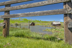 Corral and flooded barn Stock Photography