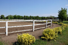 Corral for horses Royalty Free Stock Photo