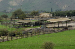 Corral and ranch in Golan Heights Stock Images