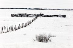 Corral in snow. Scene in the higher elevations of Utah Royalty Free Stock Photo