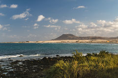 Corralejo Bay in Fuerteventura, Spain. Turquoise water at Corralejo Bay in Fuerteventura, Spain with some bushes in the foreground royalty free stock image