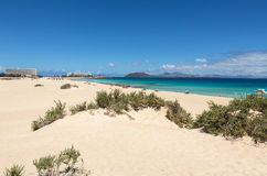 Corralejo Beach on Fuerteventura, Royalty Free Stock Photo