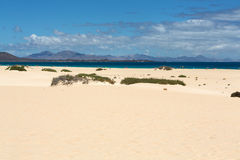 Corralejo Beach on Fuerteventura Royalty Free Stock Image