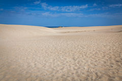 Corralejo dunes stock photography