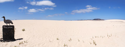 Corralejo, Fuerteventura, Canary islands, Spain Royalty Free Stock Photography