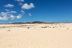 Corralejo sand dunes and extinct volcanoes  in the background. Royalty Free Stock Image
