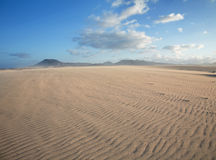 Corralejo sand dunes nature park Royalty Free Stock Photography