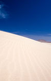 Corralejo sand dunes Royalty Free Stock Photos
