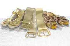 Correa Imagen de archivo libre de regalías
