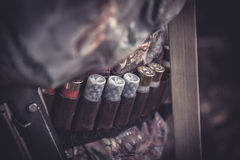 Correa de la munición de la caza con las cáscaras durante temporada de caza Fotografía de archivo