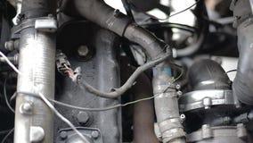 Correa del alternador de la correa dentada en el movimiento en un motor de coche corriente almacen de video