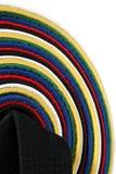 Correas de los artes marciales - vertical imagen de archivo