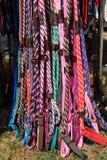 Correas de perro Foto de archivo libre de regalías