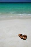 Correas en una playa imagen de archivo