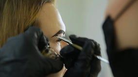 Corrección de la ceja El Cosmetologist pone la pintura en las cejas del ` s del cliente con el cepillo almacen de video