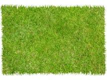 Corrección de la hierba Imágenes de archivo libres de regalías