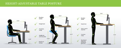 Correct postures for Height Adjustable and Standing Desks. Height Adjustable and Standing Desks correct poses. Ergonomics healthy postures Royalty Free Stock Image