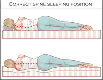 Correct spine sleeping position. Illustration Stock Image