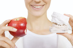 Correction of bite (denture model). Woman holding a teeth sample and apple Royalty Free Stock Photos