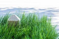 Correction d'herbe Photo stock