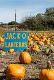Correction de potiron, gisement de lanterne d'o de Jack Photos libres de droits