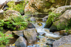 Corredeira bonita da paisagem em um rio das montanhas e em um waterf pequeno Foto de Stock