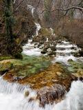 Corredeira do rio Fotografia de Stock