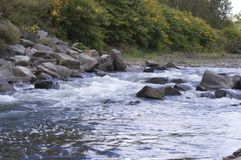 Corredeira do rio de Genessee Fotografia de Stock