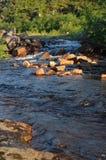 A corredeira no rio Kola Peninsula Fotografia de Stock Royalty Free