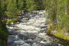 Corredeira no rio selvagem Foto de Stock Royalty Free