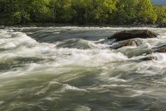Corredeira nova do rio Imagens de Stock
