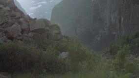 Corredeira rápida do rio nas montanhas rochosas altas cobertas na neve com os arbustos verdes filme