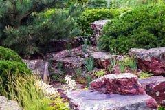 Corrediça alpina no projeto da paisagem Imagem de Stock