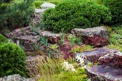 Corrediça alpina no projeto da paisagem Imagens de Stock