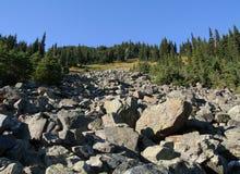 Corrediça da rocha no vale de Callaghan fotografia de stock