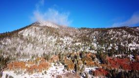 Corrediça invernal da montanha da queda com neve e cores do outono video estoque