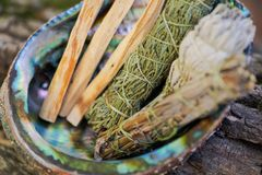 Corredo della macchia - i bastoni di Palo Santo, Wildcrafted hanno asciugato il apiana prudente bianco di Salvia, l'artemisia del fotografia stock