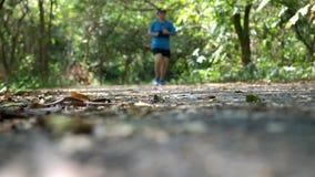 Corredor da jovem mulher na fuga na floresta com luz solar natural da manhã video estoque