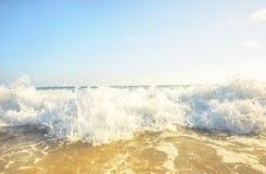 Corredor de la pelota de playa Fotos de archivo