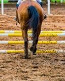 Corredor do cavalo para o obstáculo na raça equestre vista atrás fotos de stock