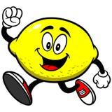 Corredor do limão ilustração stock