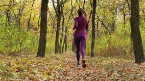Corredor do movimento lento - corredor da mulher que movimenta-se no trajeto de floresta do outono Treinamento running da fuga fê video estoque