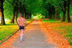 Corredor en el movimiento en un parque hermoso Imagen de archivo